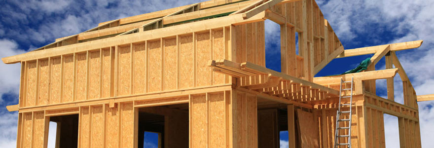Pourquoi construire une maison en bois